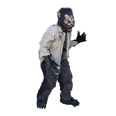 Werewolf Great Wolf Adult Halloween Costume Mask Gloves Chest Legs Feet