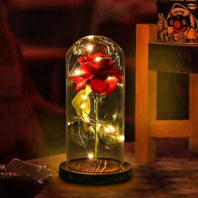 Beauty And The Beast Decor (Beauty And The Beast Enchanted Rose Glass LED Lighted Wedding Home Decor Gift)