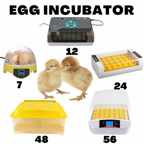 7/12/24/48/56 Automatic Eggs Turning Digital LED Display with Light