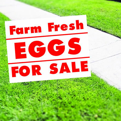 Farm Fresh Eggs For Sale Plastic Indoor Outdoor Coroplast Yard Sign