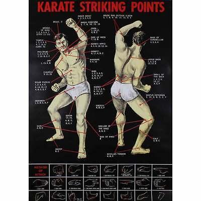 Schaubild Trefferpunkte Kampfsport, Übung Karate Kunstdruck Poster Bild Plakat