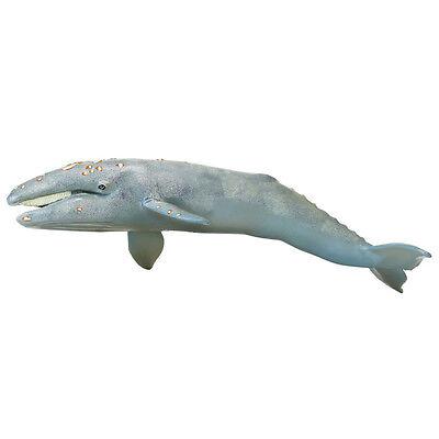 KILLER WHALE by Safari Ltd;toy//whales//Monterey Bay//210202