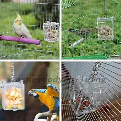 Birds Foraging Toys Feeder Cage Parrot Accessory Acrylic Fruits Food Pet Toys