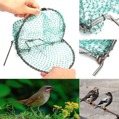 "Heavy Duty 200mm 7.87"" Sparrow Starling Bird Quail Net Humane Live Trap Hunting"