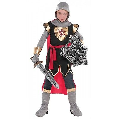Medieval Knight Costume Kids (Knight Costume Kids Medieval Warrior Halloween Fancy)