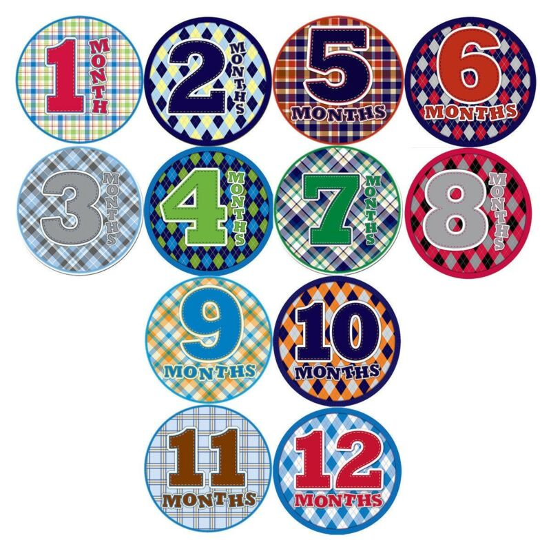 Monthly baby Boy Stickers Milestone T-Shirt Sticker 12pc Set