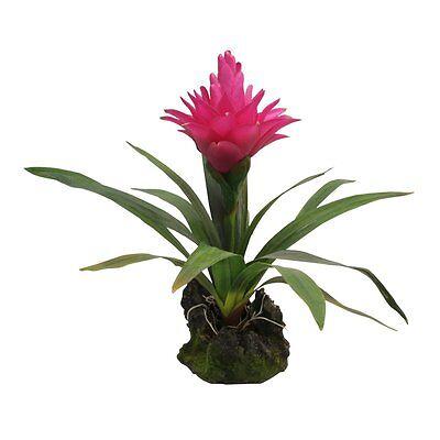 Lucky Reptile - Bromelie purpur, groß - Kunststoffpflanze Deko Dekoration