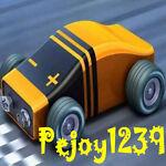 pejoy1239