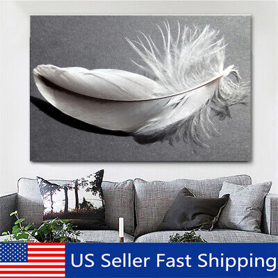Canvas Feather Abstract Nature Grey White Landscape Wall Art Picture Home