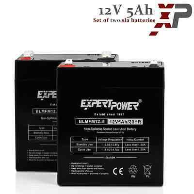 Razor E100 E125 E150 Electric Scooter battery - ExpertPower 12V 5AH (2) Pack