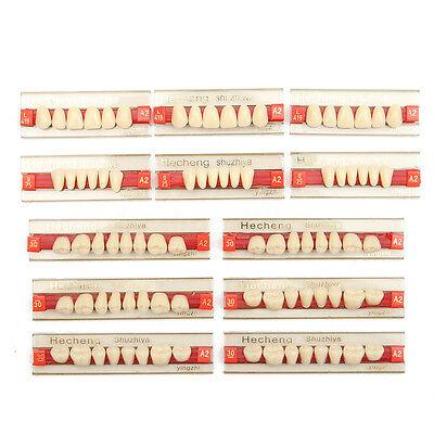 3 Set Of 84 Stiff Denture Dental Acrylic Resin Teeth Vita Color A2 Upperlower