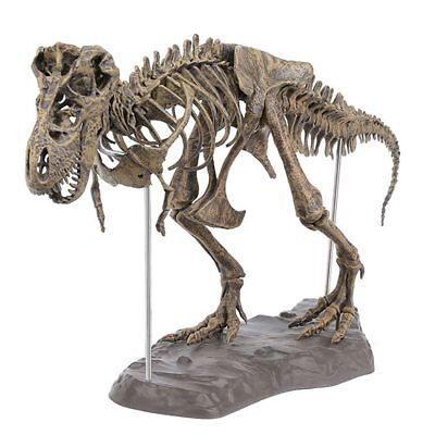 T-Rex Tyrannosaurus Rex Skeleton Dinosaur Animal Collector Decor Model NEW Toy - T Rex Model