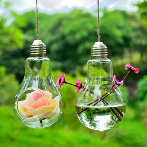 vase suspendu hanging verre ampoule fleur plante hydroponique d coration maison ebay. Black Bedroom Furniture Sets. Home Design Ideas