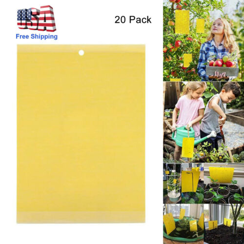 20Pcs Sticky Fly Trap Paper Yellow Traps Fruit Flies Insect