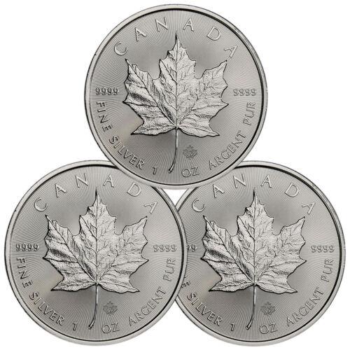 Lot of 3 - 2019 Canada 1 oz. Silver Maple Leaf $5 Coins GEM BU SKU55535