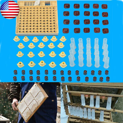 152pcs Queen Rearing System Cultivating Cage Beekeeping Box Bee Catcher Kit Us