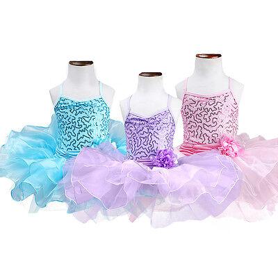 Girls Gymnastics Ballet Dress Kids Leotard Tutu Skirt Dance Ballerina - Kids Ballerina Costume