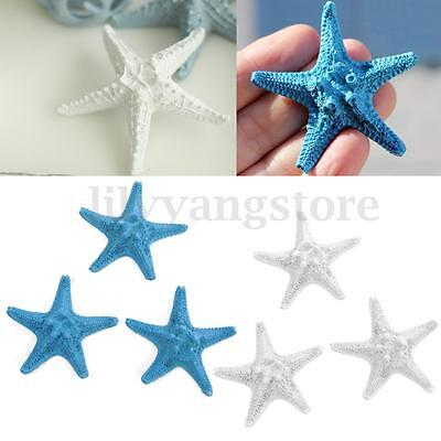 3 Pcs Resin Starfish Tropical Ornament Beach Ocean Sea Star Home Wall Decoration (Beach Decoration)