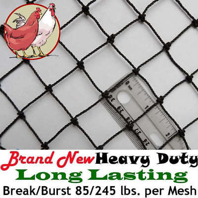 """Poultry Netting 25' x 50' 1"""" Heavy Knotted Aviary Bird Net 8-10 Year Lifespan!"""