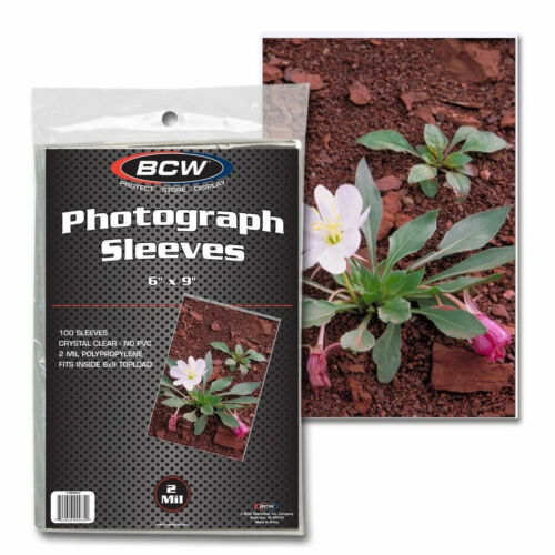 """100 BCW 2 MIL Clear Topload 6""""x9"""" Photograph Storage Polypropylene Soft Sleeves"""