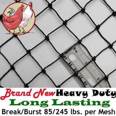 Netting Poultry Plant Bird Aviary Fruit Garden Protection Net Nets Long Lasting!