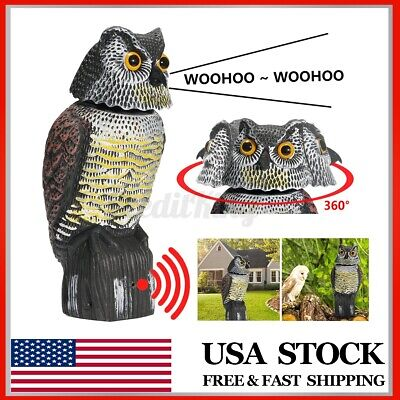 Owl Decoy Rotating Head & Sound Shadow Control Weed Pest Control Crow Scarecrow