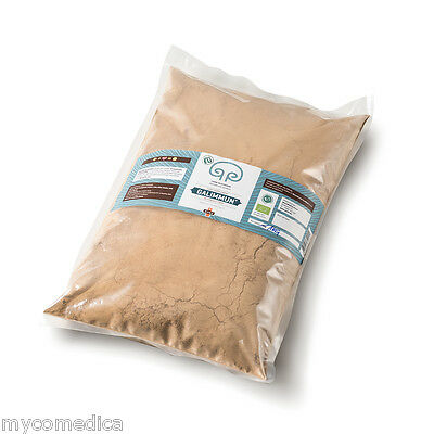Ganoderma Lucidum Reishi (BIO Reishi Ganoderma lucidum Mushroom 1 kg in Beutel verpacktes Pulver)