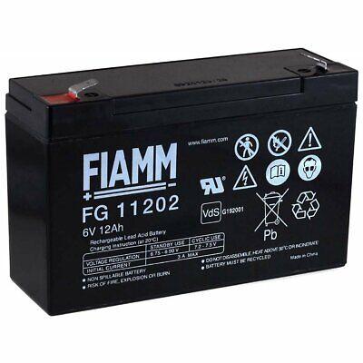 FIAMM Recambio de Batería para Vehículos para niños Coche Infantil Quad 6V