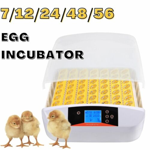 7/12/24/48/56 Automatic Eggs Turning Digital LED Display with Light Free Ship~~
