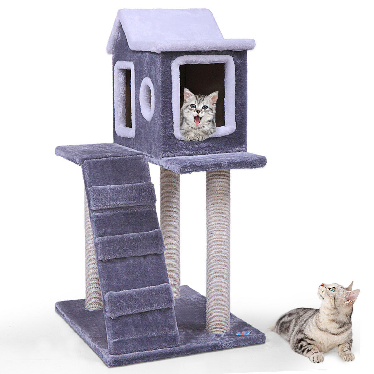 "36"" Pet Cat Tree Play House fluffy Condo w/ Scratching Posts Climbing Ladder"
