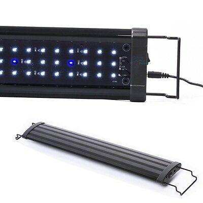 "30""- 42"" LED Light 108 pcs HIGH LUMEN Aquarium Fish Tank White Blue Extendable"