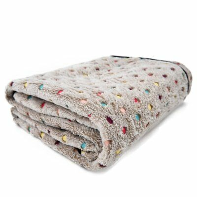 PAWZ Road Pet Dog Blanket Fleece Fabric Soft and Cute Grey L