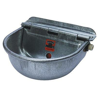 Little Giant Galv Auto Stock Waterer