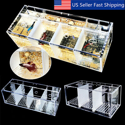 Acrylic Aquarium Baby Betta Hang Fish Tank Guppy Breeding Rearing Hatchery Fish & Aquariums
