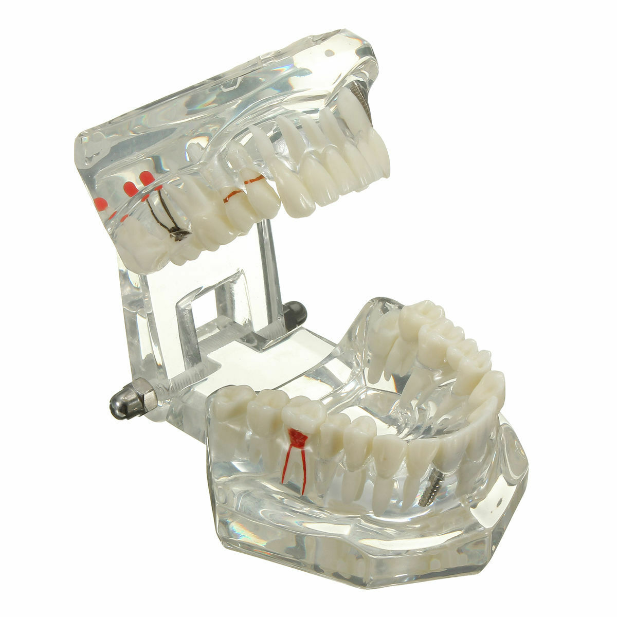 Advanced Dental Implant Studies - Home