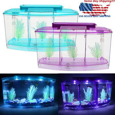 Betta Fish Aquarium Tank with LED Divider Filter Small Penn Plax Deluxe -