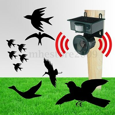 PIR Outdoor Solar Ultrasonic Pest Animal Bird Crow Repeller Repellent Scarer