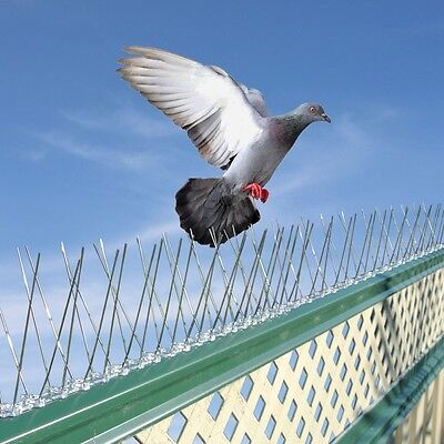10 Pcs Bird Pigeon Steel Spikes Pest Control Aerial TV Defender Deterrent 1.65 m