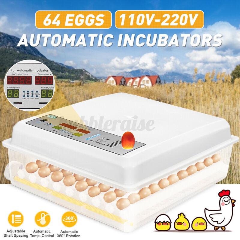 Automatic 64 Digital Egg Incubator Hatcher 110-220V & 12V Temperature Control
