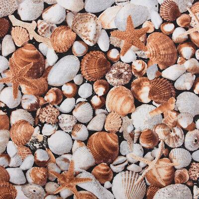 Dekostoff Baumwollstoff Muscheln Seestern braun weiß 1,40m - Seestern Kostüme