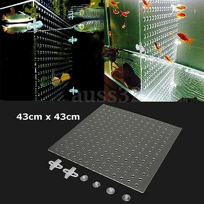 "17''x17"" Clear Acrylic Divider with Holes for Aquarium with 4pcs Suction Clip"
