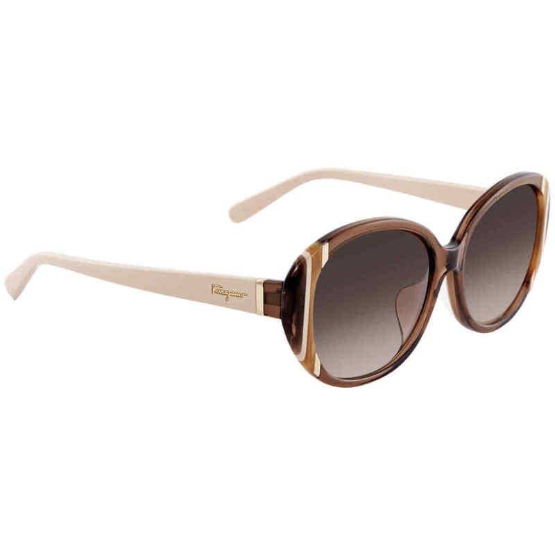 Salvatore-Ferragamo-Brown-Gradient-Round-Ladies-Sunglasses-SF842SA2105816
