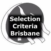Government Selection Criteria (Brisbane) special $30 per criteria Brisbane City Brisbane North West Preview