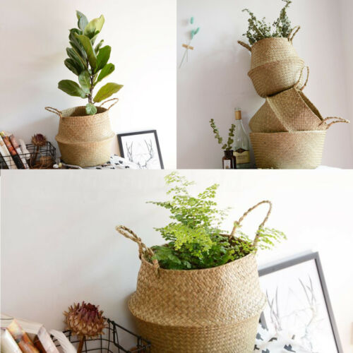 korb seegras aufbewahrungskorb pflanzen flechtkorb topf. Black Bedroom Furniture Sets. Home Design Ideas