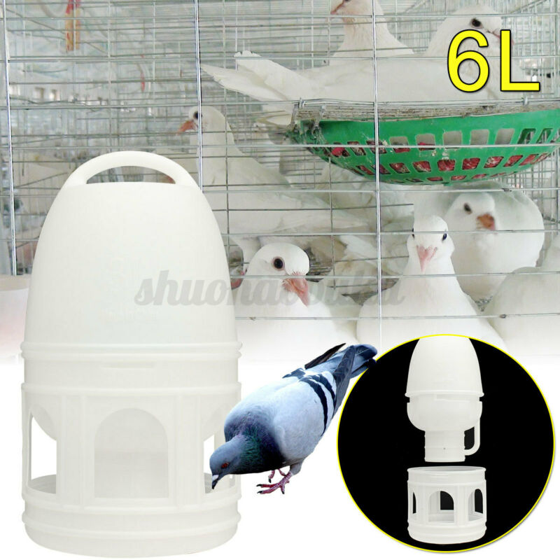USA 6000ML Removeble White Plastic Drinker With Handle For Pigeons Birds Plastic