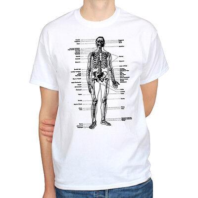 Labeled Skeleton Anatomy Biology Science Art Vintage Hipster Mens T Shirt Tee