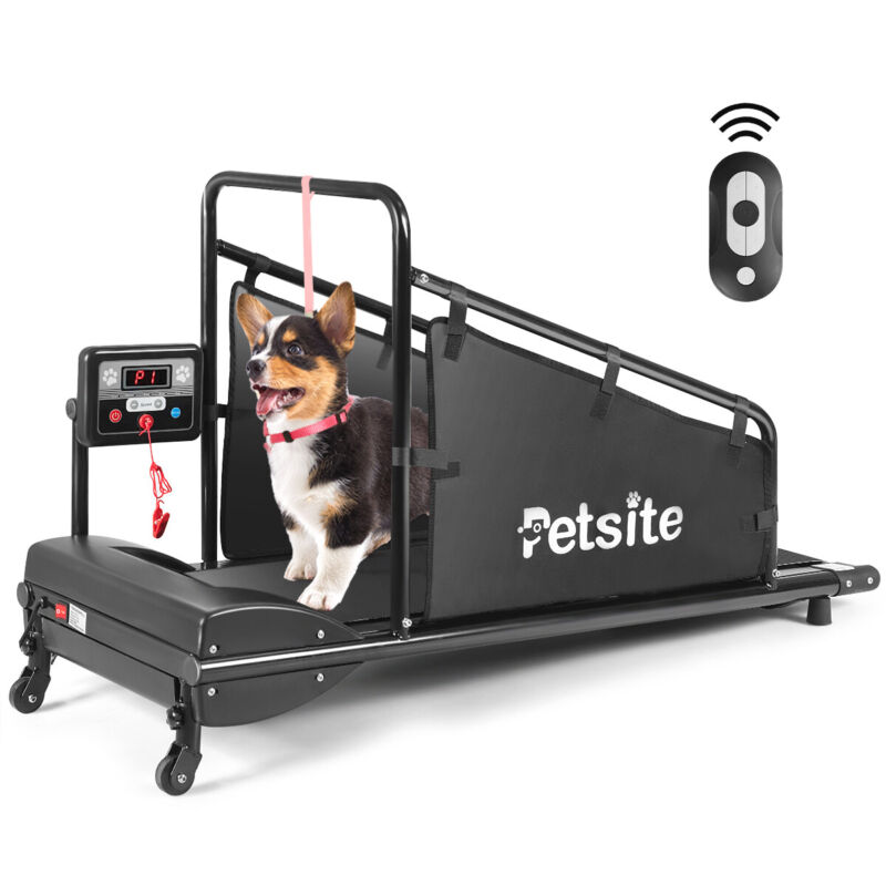 Pet Treadmill Indoor Exercise For Dogs Pet Exercise Equipment w/ Remote Control