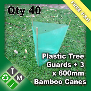 40-x-Plastic-Tree-and-Plant-Guard-Protection-Sleeves-120-x-600mm-Bamboo-Canes