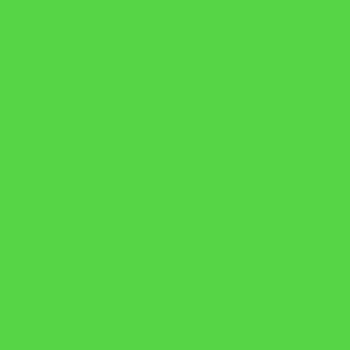 ae9cdf48259 Prism Backdrops by Ravelli 10x20  (9x18  after pre-shrinkage) Chromakey Green  Muslin Photo Video Backdrop Background 100% Cotton