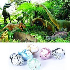 6pcs blanc oeuf de dinosaure eclosion dans l